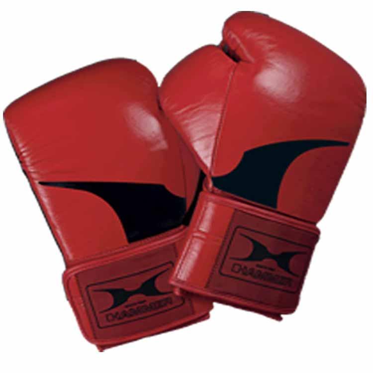 Boxhandschuhe PREMIUM von HAMMER SPORT in verschiedenen Varianten