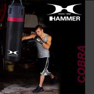 Boxsack Set COBRA von HAMMER SPORT Typ a