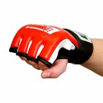 mma_handschuhe_mixed_martial_arts